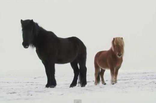 Исландия. Зима - Iceland Winter Wilderness