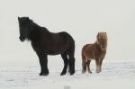 Исландия. Зима