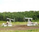 Нефтеносные районы Татарстана